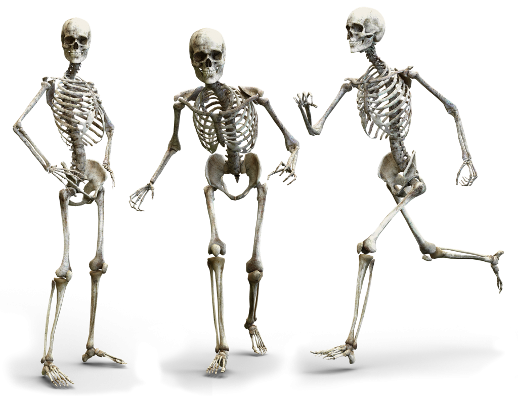 Happy Skeleton family does not need over hyped consumer products to be happy! Plus their postures are better...